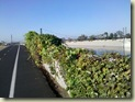 LA River Bike Trail