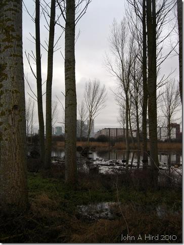 2010-02-07 018