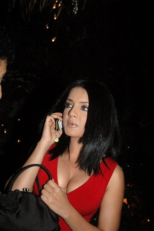 Celina Jaitley big boobs