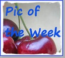 AA Pic of the Week 125 w