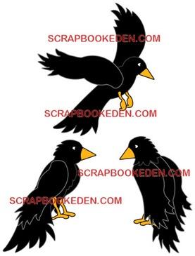 crow trio-500