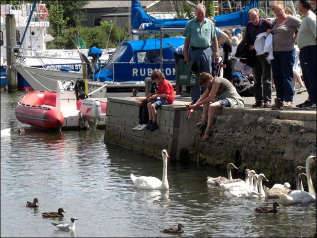 swans.quay