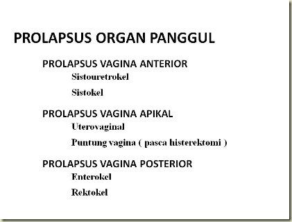 Prolapsus Organ Panggul