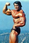 Arnold Schwarzenegger bicep pose