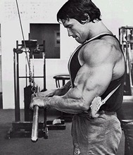 Arnold Schwarzenegger tricep pushdown