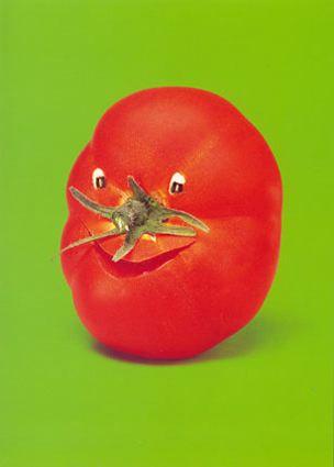 rare skills - vegetable animals - funniest area