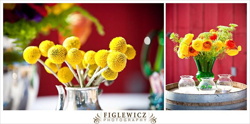 FiglewiczPhotography-CamarilloRanch-019.jpg