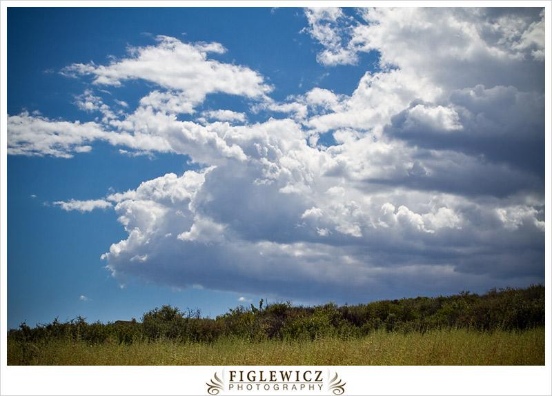 FiglewiczPhotography-AZ-0022.jpg