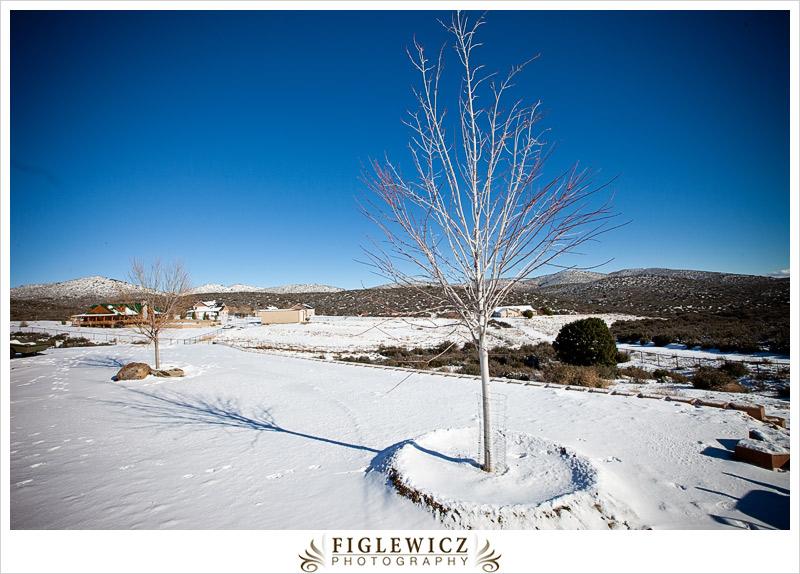FiglewiczPhotography-Arizona-0001.jpg