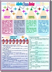 ADJECTIVE AND PRONOUN REVIEW