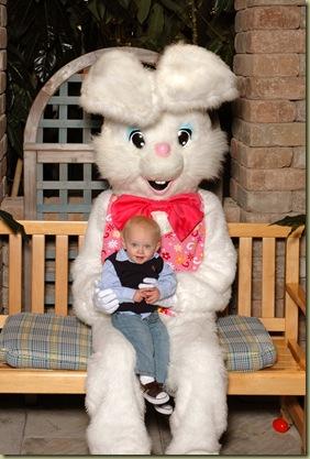 bunny 2010