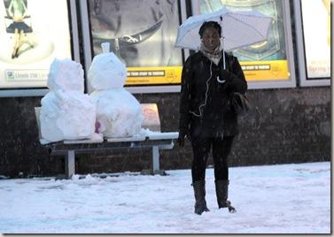pam-snow