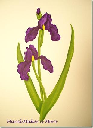 Iris PIY Kit
