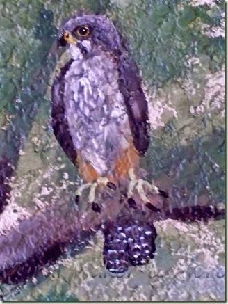 Hawk-Mural-4