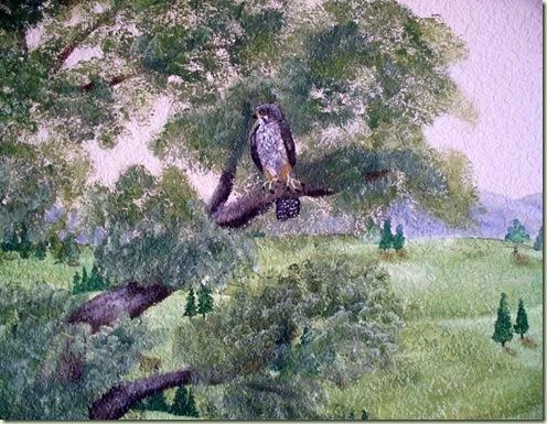 Hawk-Mural-6