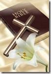 bible &flower
