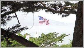 Flag!  Eagle!