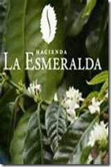 2. Hacienda La Esmeralda, Boquete, Panama