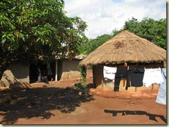 zambia greg 2009 254