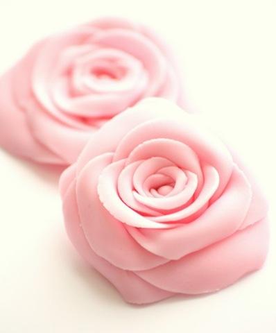 [roses7[5].jpg]