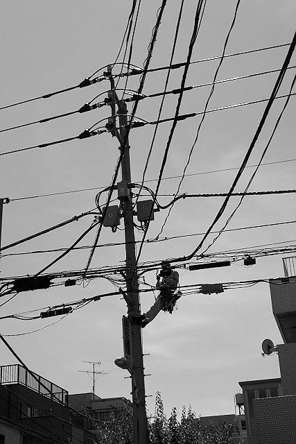 Shinjuku Mad - Birds fly faster than time 05