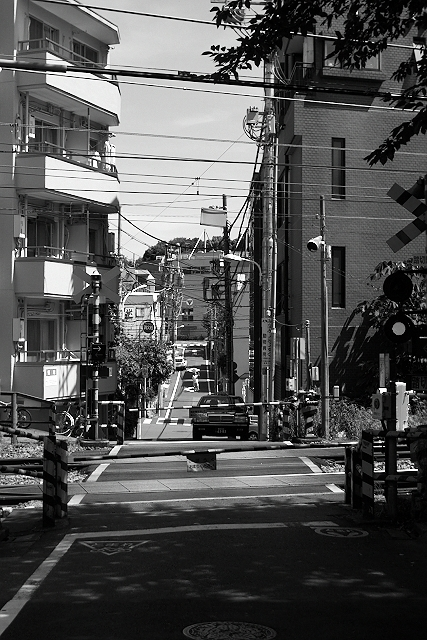 Shinjuku Mad - Birds fly faster than time 19