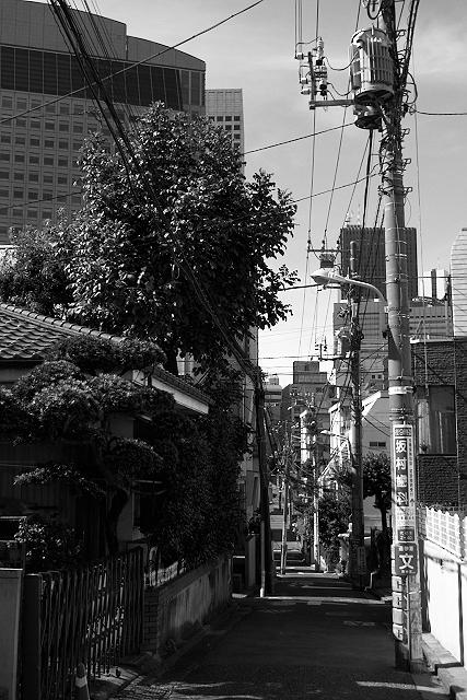 Shinjuku Mad - Birds fly faster than time 13