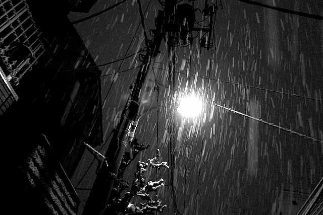 Shinjuku Mad - Radiating with snow 09