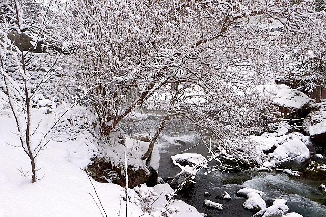 Shinjuku Mad - Paysage d'hiver 05