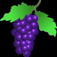 stuuf_grapes.png