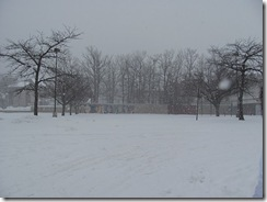 snow pic parking lot