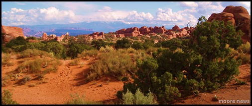 rock formations at Arches NP w/La Sal Mt in background