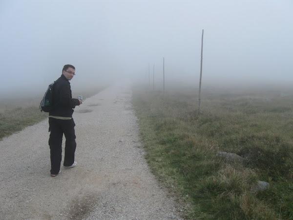 Maciek znikający we mgle