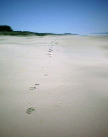 untitled-(footprints): a.watson-will