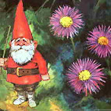 Fairytale creatures - Gnomes