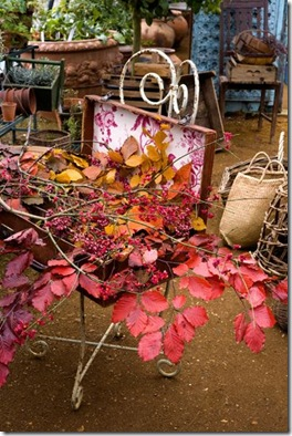 RGW_CL_AUTUMN_10