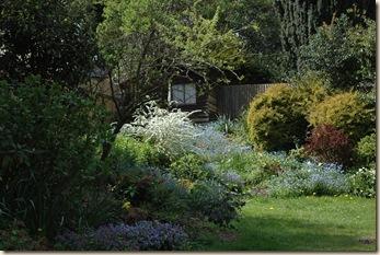 garden 064