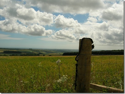 south downs walk 005