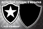 Botafogo Futebol e Regatas