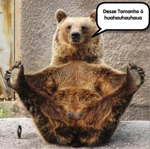 Ursopescador