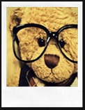 Clever_Teddy