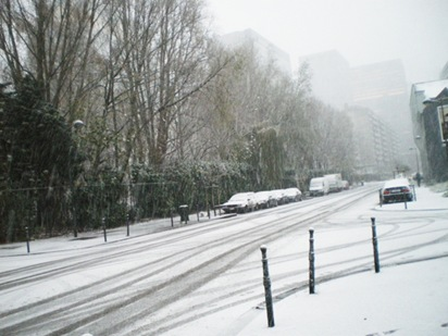brussel-in-white01