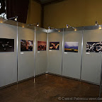 Exhibitions by Daniel Petrescu