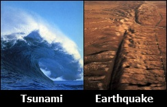 Tsunami/Earthquake