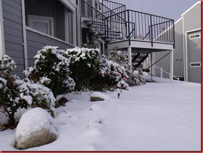 snowwknd 028
