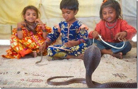 young-snake-charmers1