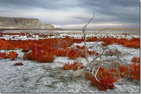 Aral_Sea4