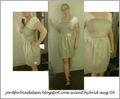 gråbeige kjole aug09