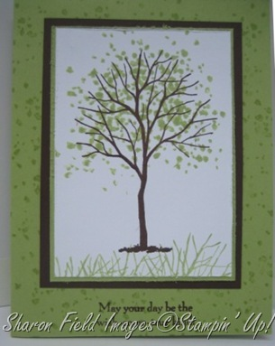 tree2ctkcardsstmpbkgd