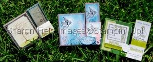 June2009Sidestep_card_class